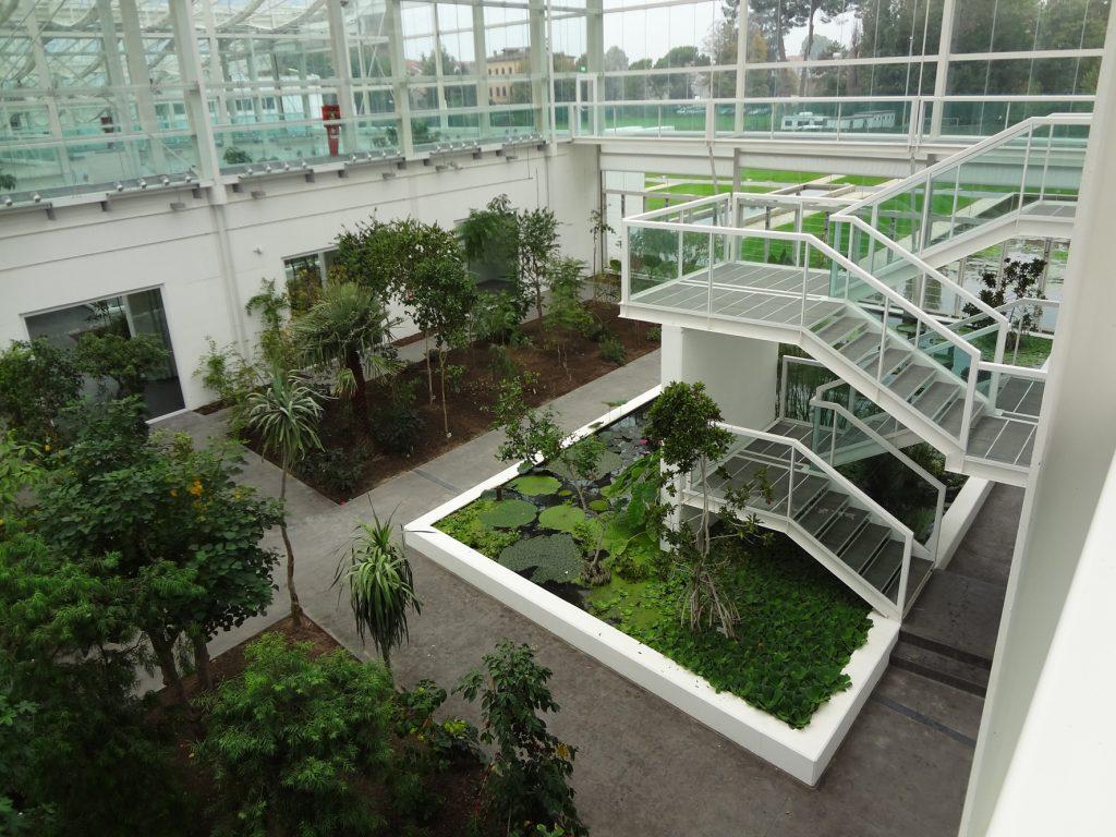 Orto botanico di padova una vetrina per la biodiversità